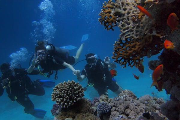 scuba diving instructor jobs